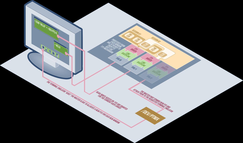 ptmx-pts-workflow